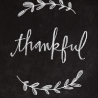 [In the News] Thank Seniors This Thanksgiving